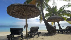 Summer resort on the coast in tropics. Resort area on the ocean coast with empty chaise longues and straw sun umbrellas among the palms. Summer vacation in stock footage