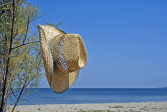 Summer resort of Halkidiki peninsula, Greece Royalty Free Stock Photo