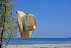 Summer resort of Halkidiki peninsula, Greece Royalty Free Stock Photo