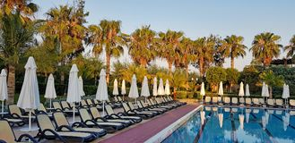 Summer resort: swimming pool and chaise loungues. Summer resort on mediterranean beach, swimming pool and chaise loungues with palms behind stock photo
