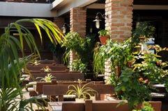 Summer restaurant in the resort. Royalty Free Stock Photo