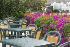 Summer restaurant in terrace stock photos