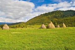 Summer in Retezat. Summer landscape in Retezat mountains, Romania Stock Photo