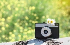 Summer retro camera. Summer day stock image
