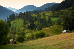 Summer in the Rhodope mountain, Bulgaria Royalty Free Stock Image