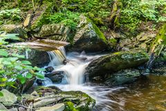 Summer in Ricketts Glen State Park of Pennsylvania royalty free stock photography