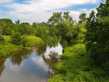 Summer river. Summer landscape view with river and trees Royalty Free Stock Photos