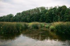 Summer river Stock Photos