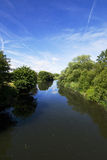 Summer river Stock Image