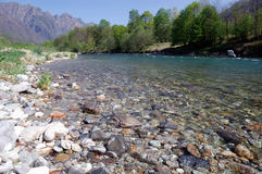 Summer river landscape. Toce River, Italy Royalty Free Stock Images