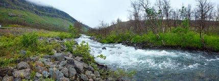 Summer river panorama (Norway). Stock Image