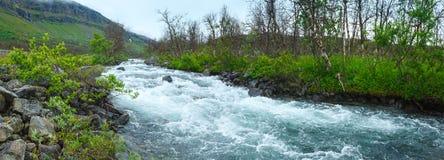 Summer river panorama (Norway) Royalty Free Stock Image