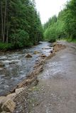 Summer road in the Carpathian mountains. Ukraine stock photography