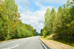 Summer road in Russian forest stock photography