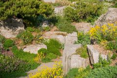 Summer Rockery Garden Royalty Free Stock Photos