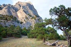 Summer rocks landscape Royalty Free Stock Photos
