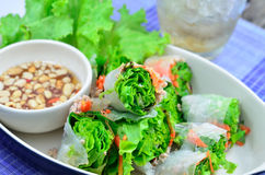 Summer Roll. Southeast Asian Style Summer Roll Royalty Free Stock Image