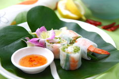 Summer roll Stock Photography