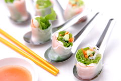 Summer rolls Stock Photography
