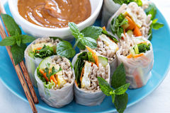 Summer rolls with soba noodles and vegetables Royalty Free Stock Photos