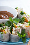 Summer rolls with soba noodles and vegetables Stock Photography