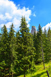 Summer in Romanian high Mountains Stock Photo