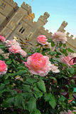 Summer roses and castle Royalty Free Stock Photos