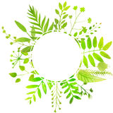 Summer round frame with bright green leaves Royalty Free Stock Photos