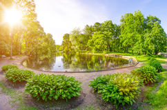 Summer round pond in a park with sunlight Stock Photography