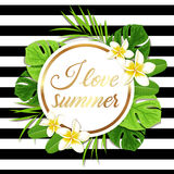 Summer round tropical background Royalty Free Stock Photography