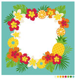 Summer rounded shape frame  Stock Photos