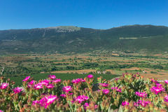 Summer rural green valley landscape with mountains in Italian Abruzzo Royalty Free Stock Images