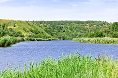 Summer rural landscape Stock Photos