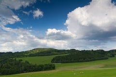 Summer rural landscape Stock Photography