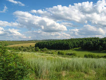 The Summer rural landscape amidst beautiful clouds.  Royalty Free Stock Photos