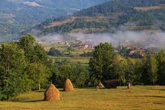 Summer rural landscape in the Carpathian mountains, in Moeciu - Bran, Romania. Summer rural landscape above the village in the Carpathian mountains, in Apuseni Stock Photos