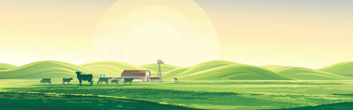 Summer rural landscape and farm. Summer rural landscape from cows and farm, dawn above hills, elongated format Stock Images