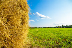 Summer rural landscape with a field and hay Stock Photography