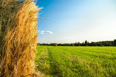 Summer rural landscape with a field and hay Royalty Free Stock Photography