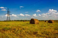 Ranches of hay in a meadow Royalty Free Stock Images