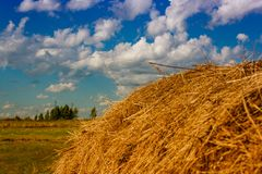 Ranches of hay in a meadow Stock Photos