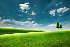 Summer rural landscape with green hills Stock Image