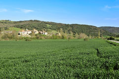 Summer rural landscape of Guipuzcoa Royalty Free Stock Photography