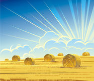 Summer rural landscape with hay Royalty Free Stock Images