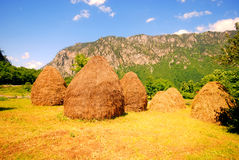 Summer rural landscape with mountain and haystacks Stock Photography