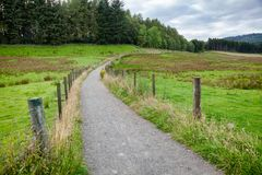 Public rights of way path through pasture in rural Scotland UK Royalty Free Stock Photography