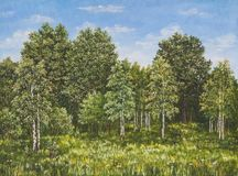 Summer rural landscape in Russia. A field and forest, a high grass. Original oil painting on canvas. stock photography