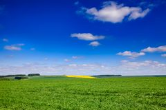 Summer rural landscape Southern England UK Royalty Free Stock Photo