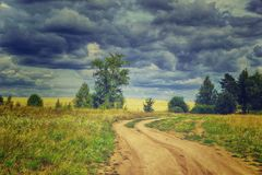 Summer rural landscape with storm sky country road away trees an. D yellow wheat field royalty free stock images