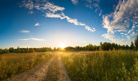 Summer rural landscape with sunrise, fog and the road Royalty Free Stock Photo
